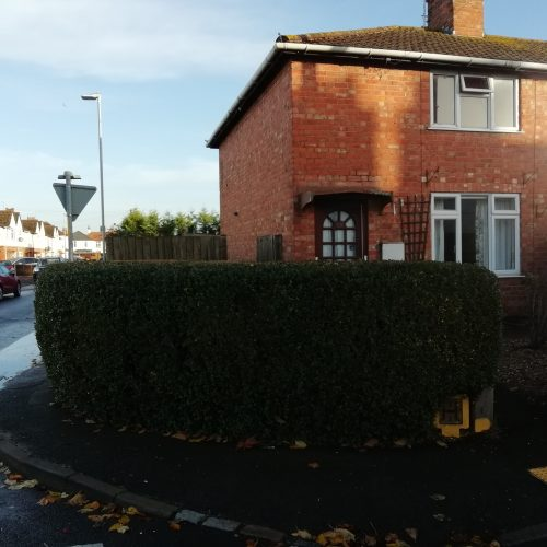 brick house with large hedge