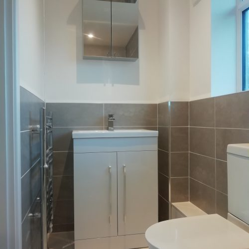 tiled and painted bathroom suite with toilet sink and vanity unit with mirrored cabinet and radiator on the wall