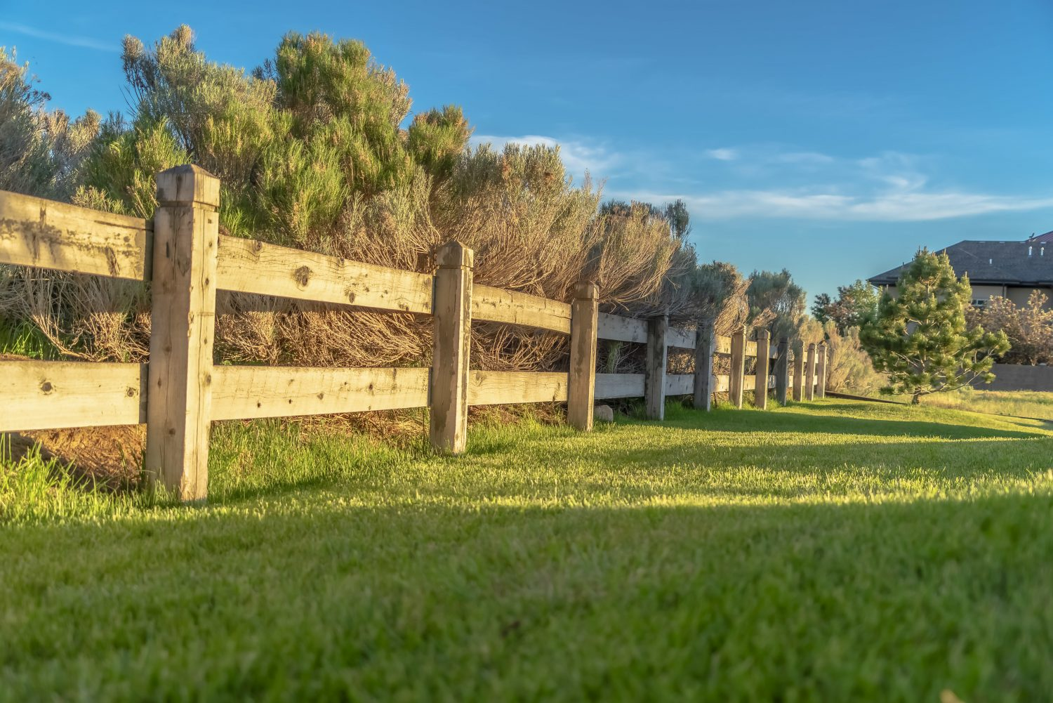 Paddock Fencing In A Grass Field